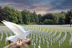 peace-dove-2667123_1920